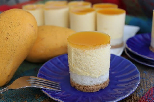Mango Yogurt Mousse Cake