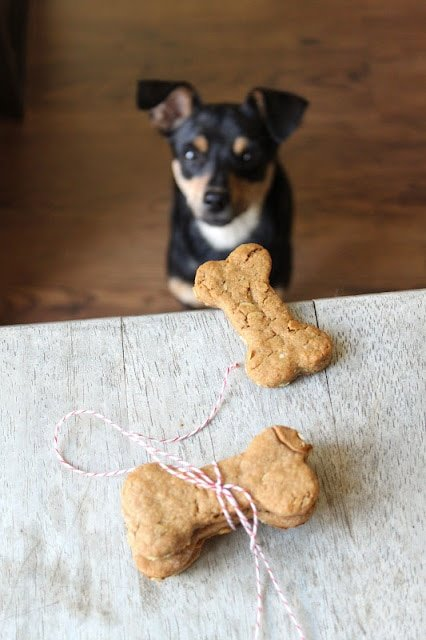 Peanut Butter and Oats Dog Bone Biscuits