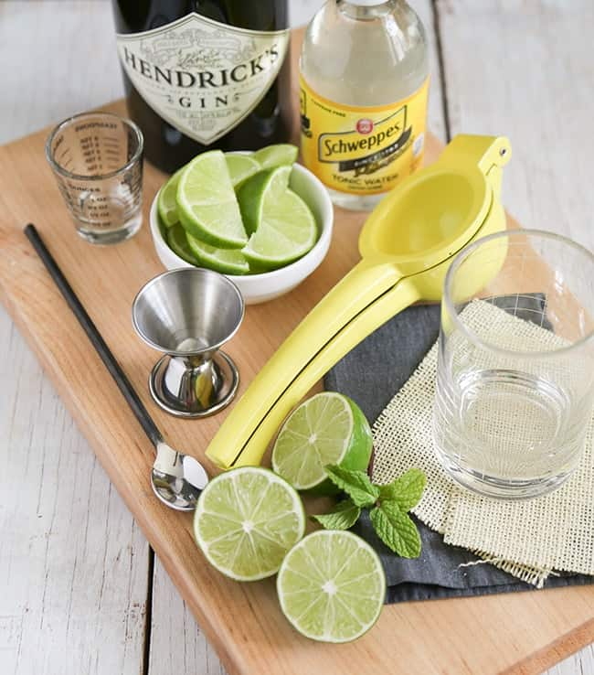 Gin-and-tonic-ingredients