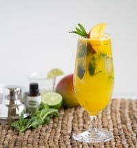 Mango Mojito | The Little Epicurean