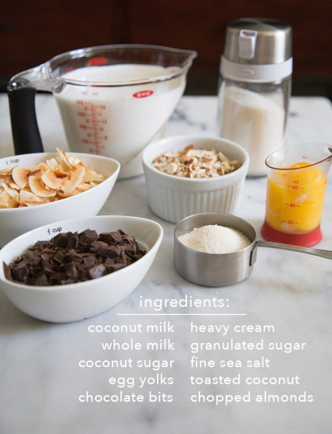 Toasted Coconut Almond Chocolate Chip Ice Cream ingredients