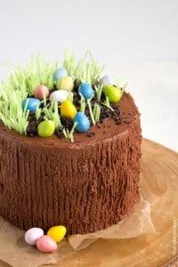 Easter Egg Hunt Chocolate Cake