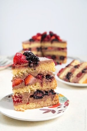 Chocolate Malt Berry Cake
