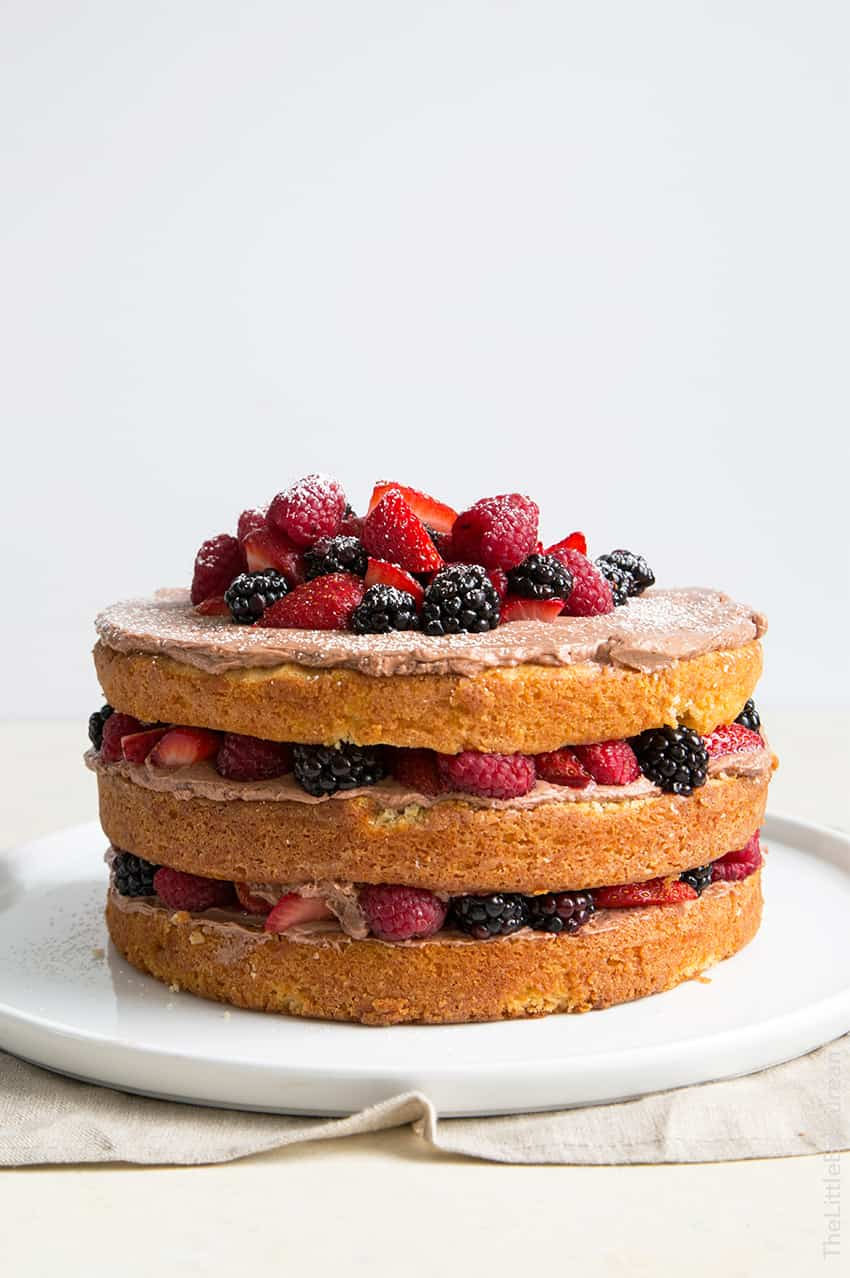 Chocolate Malt Berry Cake