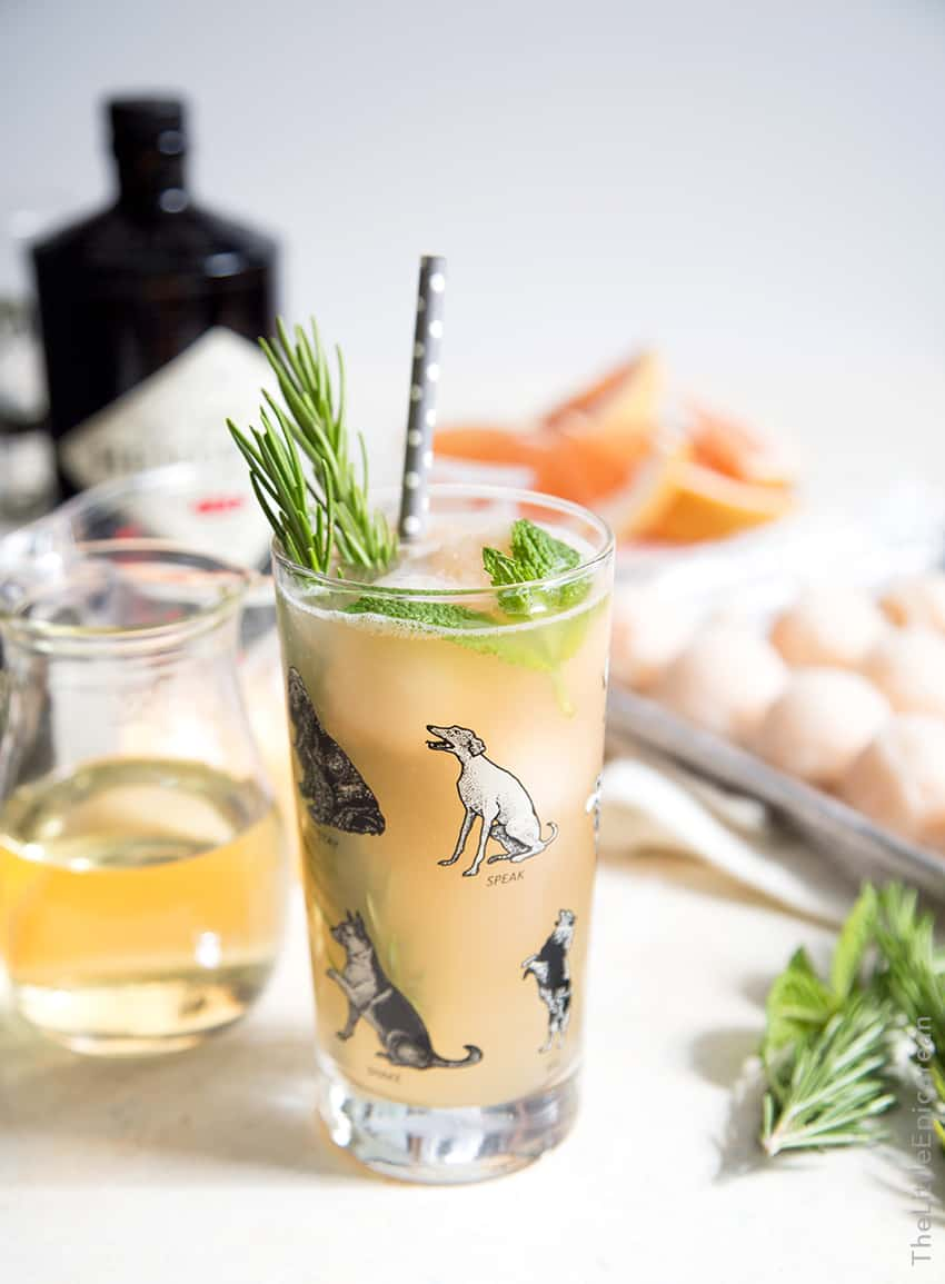 Greyhound Cocktail Float