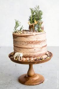 Forest Chocolate Pumpkin Cake