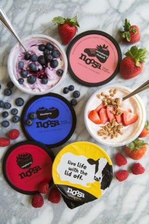 Noosa Yoghurt Snack