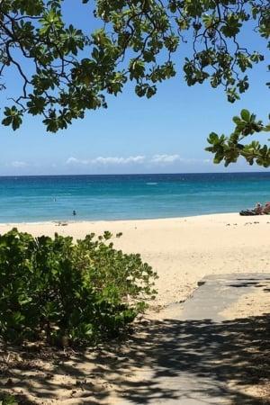 Big Island Hawaii Travel Guide