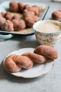 Cinnamon Sugar Twist Doughnuts