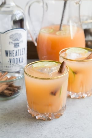 Spiced Vodka Punch