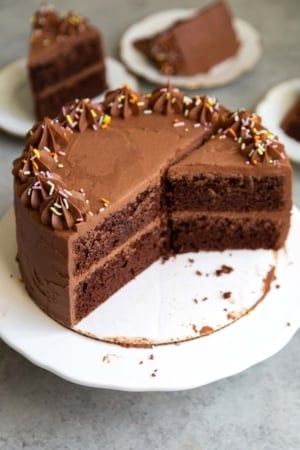 Interior of classic chocolate cake. two layer 8-inch chocolate cake.