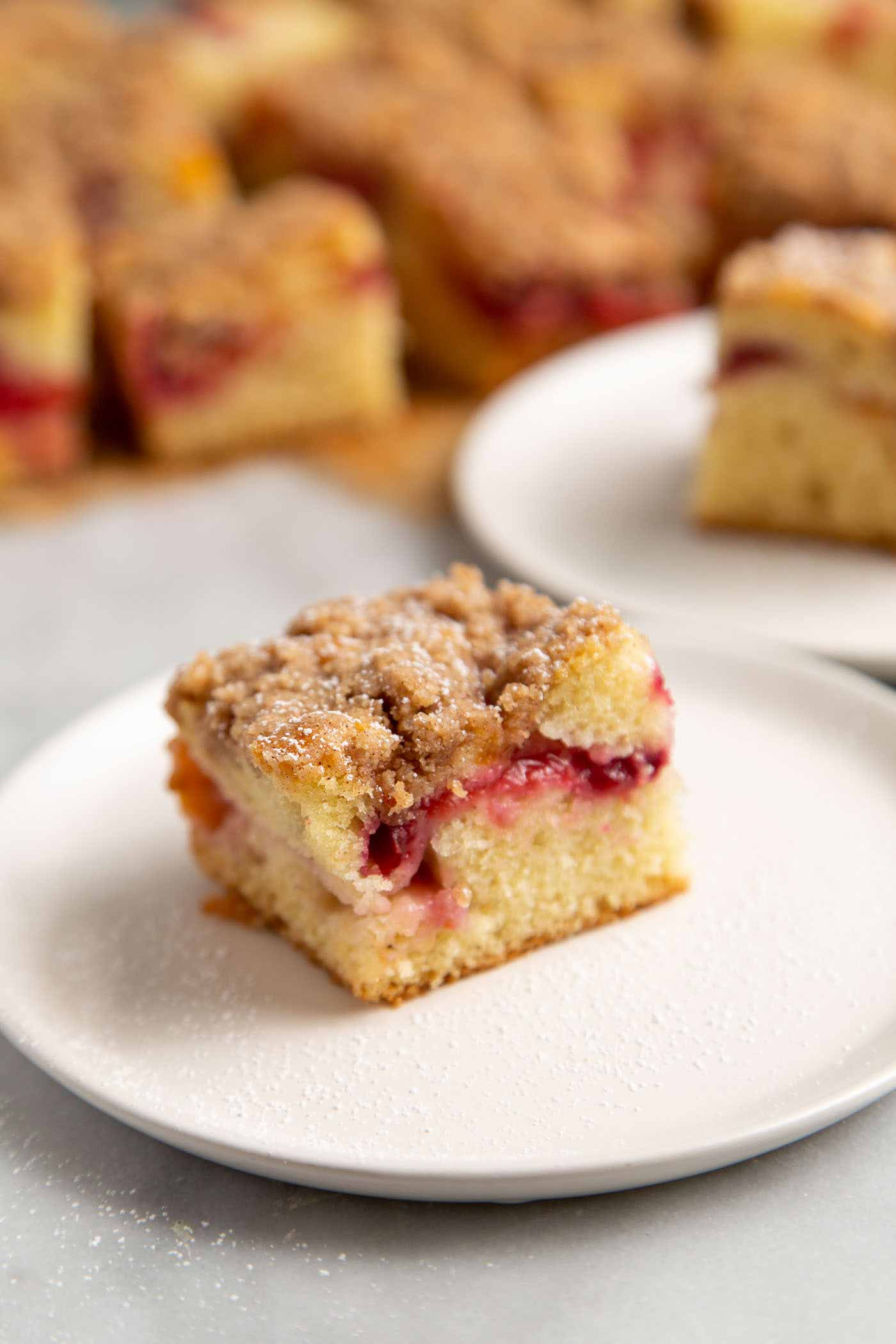 Slice of Plumcot Crumb Cake